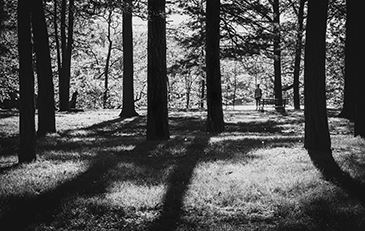 Black and white photo of Horseshoe Lake Park by Ryan Stargell